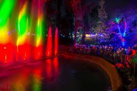Lights All Night Promo Code L A Zoo Lights