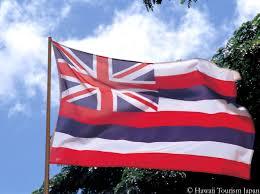 Hawaiian Flag Ukraine Page 147 Urban75 Forums