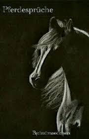 pferdesprüche pferdesprüche izzimaedchen wattpad