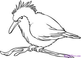 draw kingfisher bird clipart panda free clipart images