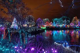 phoenix zoo lights members only columbus zoo wildlights christmas lights zoos ohio and delaware