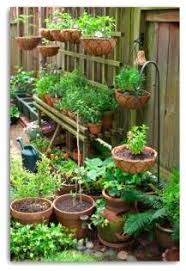 787 best vegetable gardening images on pinterest veggie gardens