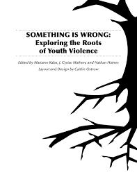 something is wrong exploring the roots of violence by project nia