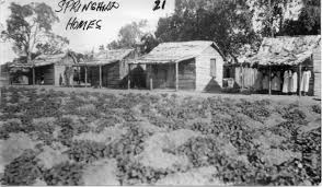 photo gallery for cape bedford mission hope vale 1886 1942