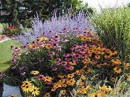 45 best foundation plantings new house images on pinterest