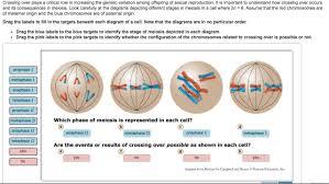 mastering biology chapter 13 hw u2013 rhs homework