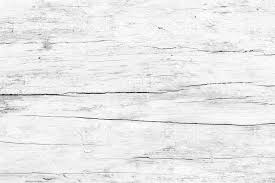 white wood abstract surface white wood table texture background up of