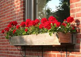 raised planter box plans u2013 outdoor decorations
