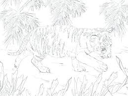 snow tiger coloring page cub scout badge coloring pages tiger color page pictures to white