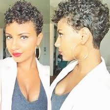 wave nuevo short hairstyles 2015 star cat cat magazine cat perch and american shorthair