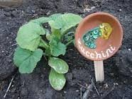 Garden Craft Terra Cotta Marker - let campers use rocks stickers and paint to create tree markers