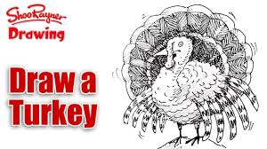 turkey drawings thanksgiving how to draw a turkey youtube