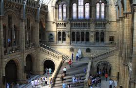 travelmarx a visit to the british natural history museum