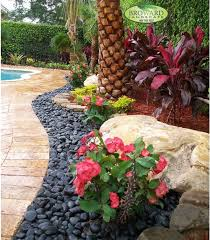 Landscaping Ideas For Florida by 121 Best South Florida Landscaping And Plants Images On Pinterest
