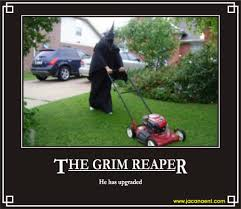 halloween meme funny grim reaper monty python google search don u0027t die today