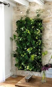 home plants decor vertical gardens indoor home outdoor decoration