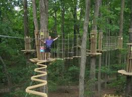 Indiana forest images Go ape adventure park is a fun forest park in indiana jpg