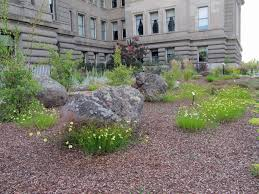 drought tolerant plants water efficient garden at idaho state