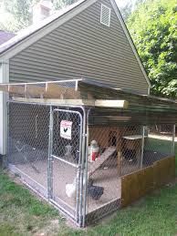 first coop altering a dog kennel backyard chickens