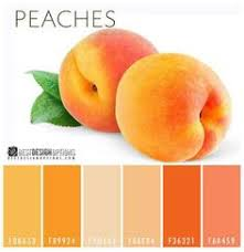 this may be it naive peach paint color sw 6631 by sherwin