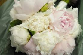 wedding flowers delivery peonies wedding flowers order direct from the grower for overnight