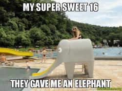 Sweet 16 Meme - my super sweet 16 they gave me an elephant make a meme
