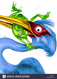 never give up illustration of a bird eating a frog frog
