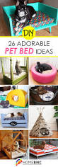 Upcycled Drawer Pet Bed Diy by Best 25 Dog Beds Ideas On Pinterest Dog Bed Dog Sleeping In