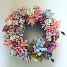 succulent wreath succulent wreath