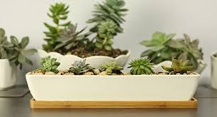 gift pro 11 1 inch long rectangle white ceramic succulent planter