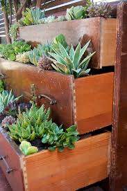top 10 diy outdoor succulent garden ideas page 4 of 10
