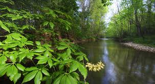 Ohio Natural Attractions images Big darby headwaters nature preserve 0