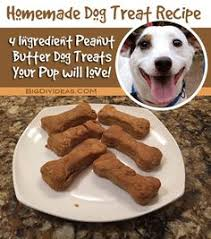 Bench Dog Cookies National Love Your Pet Day Which Dog Breed Is Best For You Dog