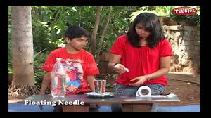 floating needle science experiments for kids science projects