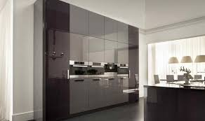 Modern Kitchen Wall Cabinets For Your Home Decoration Gray Cabinet And With White Kitchen