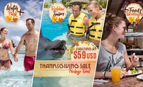 dolphin swim plus n cancun dolphinaris