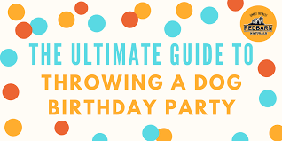 ultimate guide to throwing a dog birthday party