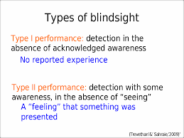 What Is Blind Sight Psychology 344 Maier Lecture Notes On Blindsight Blind Sight