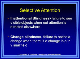 Psychogenic Blindness Consciousness Sleep Dreams Hypnosis And Drugs Chapter Ppt Download