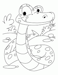 14 pics reticulated snake coloring pages boa constrictor