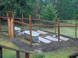rain barrel garden horse trough gardening