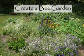 the backyard farming connection planning a bee garden