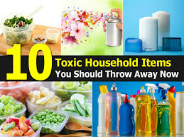 Toxicity Of Household Products by Deadly Household Items 10 Deadly Household Items 10 Deadliest