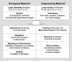 nature u0027s hierarchical materials sciencedirect