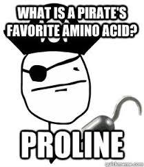 Troline Meme - what is a pirate s favorite amino acid proline pirate meme