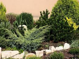 Home Landscaping Design Software Free by Online Landscape Design Course U2014 Home Landscapings Online