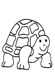 turtle colouring pictures coloring