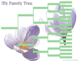 blank family tree template free printable family tree template