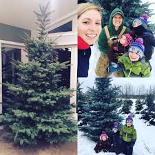 lefebvre christmas tree farm home facebook