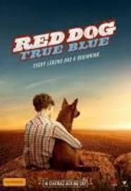 cheap tues movie red dog true blue movie at new farm cinema